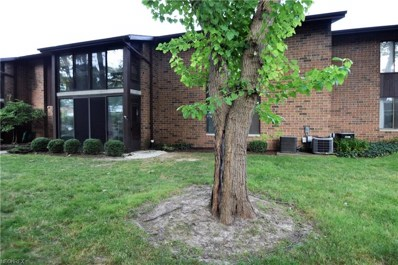 22976 Maple Ridge Rd UNIT 106, North Olmsted, OH 44070 - MLS#: 4026062