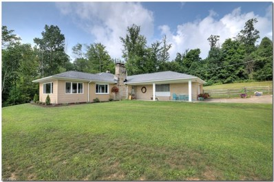 11003 State Route 700, Hiram, OH 44231 - MLS#: 4026131