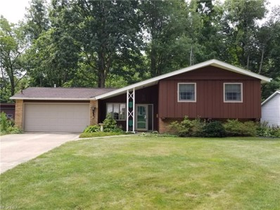 730 Valley Dr, Amherst, OH 44001 - MLS#: 4026618