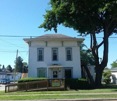 263 E McConkey St, Shreve, OH 44676 - MLS#: 4026780