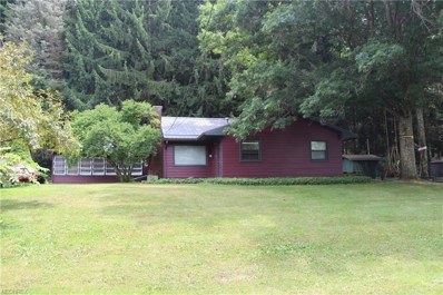 9514 Lakewood Dr NORTHEAST, Mineral City, OH 44656 - MLS#: 4027261