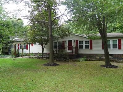 11804 Western Reserve Rd, Salem, OH 44460 - MLS#: 4027444