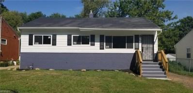 653 Frederick Blvd, Akron, OH 44320 - MLS#: 4027447