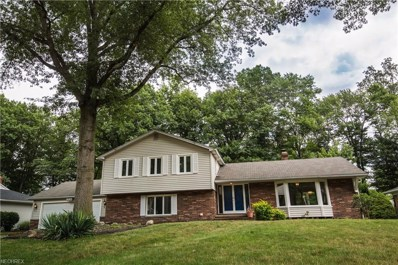 995 Oakview Dr, Highland Heights, OH 44143 - MLS#: 4027539
