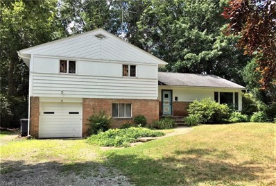 66 Goodhue Dr, Akron, OH 44313 - MLS#: 4027747
