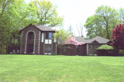 113 Countryside Dr, Broadview Heights, OH 44147 - MLS#: 4028327