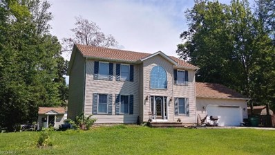 220 Radley Dr, Painesville Township, OH 44077 - MLS#: 4028424