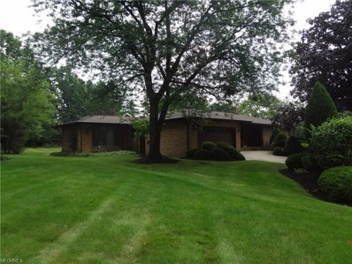 5341 Millwood Dr, Broadview Heights, OH 44147 - MLS#: 4028454