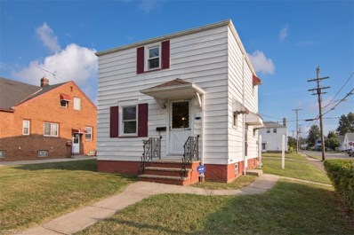 19302 Pawnee Ave, Cleveland, OH 44119 - MLS#: 4028698