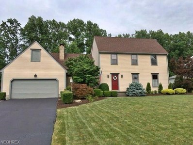 487 Greenmont Dr, Canfield, OH 44406 - MLS#: 4028710