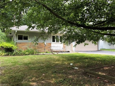 233 N Roanoke Ave, Youngstown, OH 44515 - MLS#: 4028856