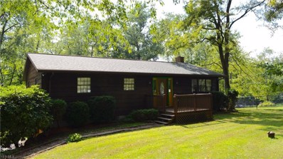 15213 Strader Road, East Liverpool, OH 43920 - #: 4029009