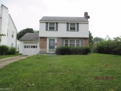 19 Pinehurst Avenue, Youngstown, OH 44512 - #: 4029053