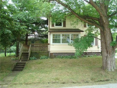 740 Leavitt Ave, Cuyahoga Falls, OH 44221 - MLS#: 4029125