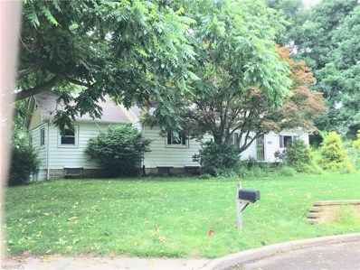 2535 Maple Dr, Twinsburg, OH 44087 - MLS#: 4029322