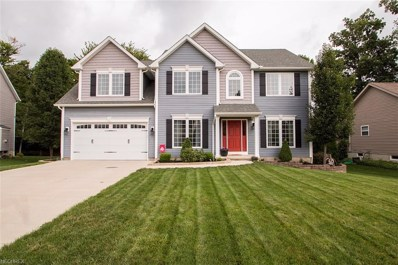 383 Bella Rosa Ct, Medina, OH 44256 - MLS#: 4029360