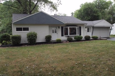 6231 Lewis St, Madison, OH 44057 - MLS#: 4029403