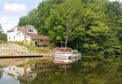 Evening Star, Roaming Shores, OH 44085 - MLS#: 4029425