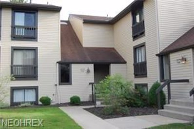 6270 Greenwood UNIT 404, Sagamore Hills, OH 44067 - MLS#: 4029426