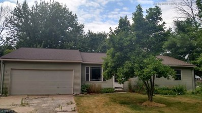 436 Maple Ave, Sheffield Lake, OH 44054 - MLS#: 4029460