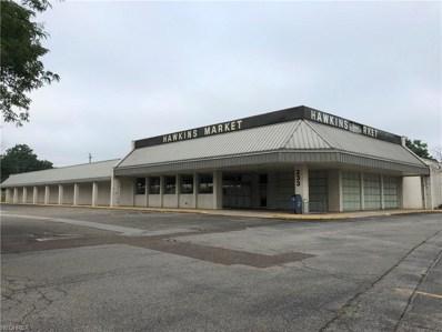 233 Lafayette Rd, Medina, OH 44256 - MLS#: 4029526