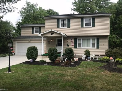 4354 Timberbrook Dr, Canfield, OH 44406 - MLS#: 4029598