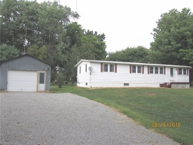 31138 Camille St, Hanoverton, OH 44423 - MLS#: 4029725