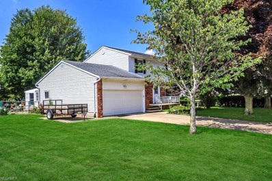 203 W Parkway Dr, Madison, OH 44057 - MLS#: 4029926