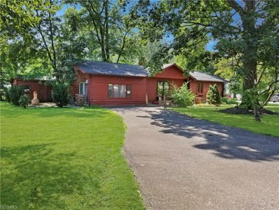 159 Demi Dune Dr, Chippewa Lake, OH 44215 - MLS#: 4030235