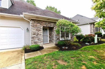 700 Fiddler Creek Dr, Painesville Township, OH 44077 - MLS#: 4030393
