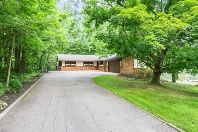 34525 Sherbrook Park Dr, Solon, OH 44139 - MLS#: 4030431
