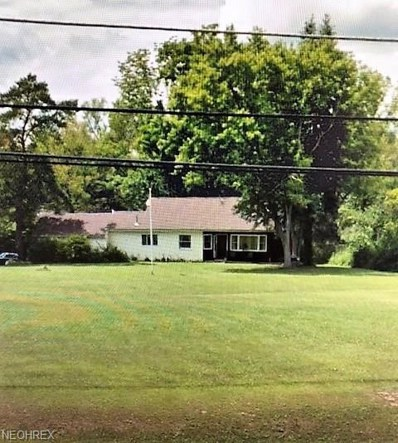 490 N Broad St, Canfield, OH 44406 - MLS#: 4030498