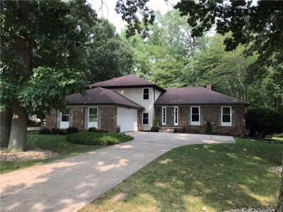 6605 Beechwood Dr, Independence, OH 44131 - MLS#: 4030578