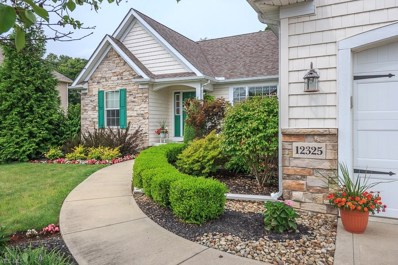 12325 Summerwood Dr, Concord, OH 44077 - MLS#: 4030698