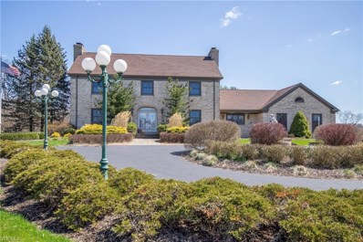 9175 Detwiler Road, Canfield, OH 44406 - #: 4030814