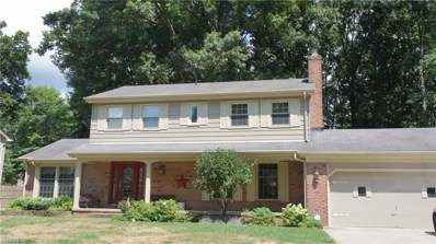 724 Squirrel Hill Dr, Youngstown, OH 44512 - MLS#: 4030986