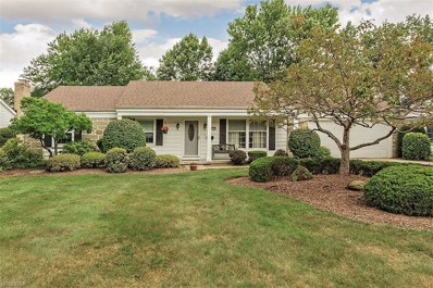 5243 Meadow Wood Blvd, Lyndhurst, OH 44124 - MLS#: 4031228
