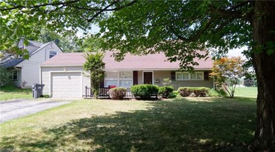 366 Rosemont Ave, Youngstown, OH 44515 - MLS#: 4031349