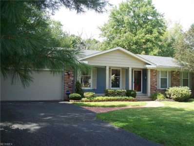 7910 Pleasantview Trl, Concord, OH 44060 - MLS#: 4031729