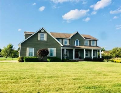 335 Oak Hollow Dr NORTHWEST, Warren, OH 44481 - MLS#: 4032033
