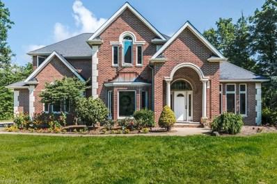 12455 Falcon Ridge Rd, Chesterland, OH 44026 - MLS#: 4032099
