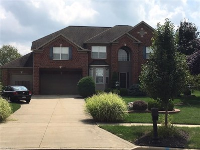 10310 Townley Ct, Reminderville, OH 44202 - MLS#: 4032524