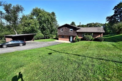 811 Crestview Dr, East Liverpool, OH 43920 - MLS#: 4032726