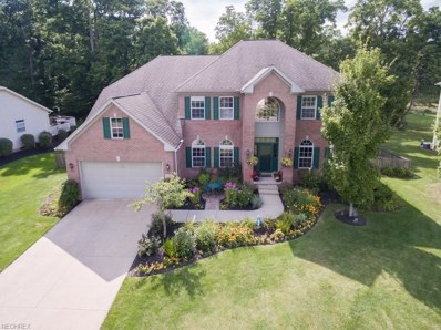 9356 Wallingford Dr, Twinsburg, OH 44087 - MLS#: 4033180