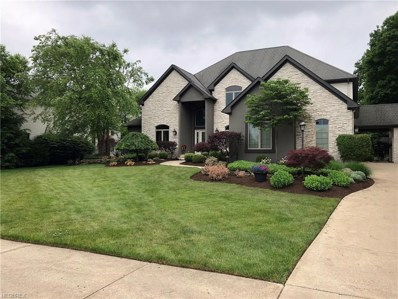 6391 Highland Green Dr, Medina, OH 44256 - MLS#: 4033289