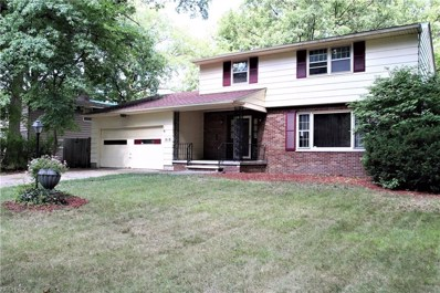 818 Red Hill Dr, Lorain, OH 44052 - MLS#: 4033524