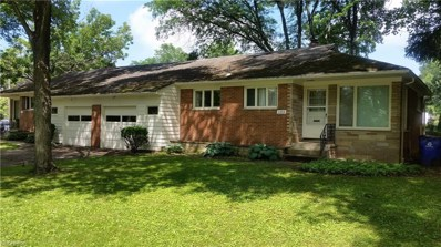 1331 S Lincoln St, Kent, OH 44240 - MLS#: 4033626