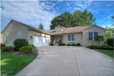161 Burning Tree Dr, Aurora, OH 44202 - MLS#: 4033784