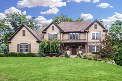 8088 Butler Hill Dr, Concord, OH 44077 - MLS#: 4034079