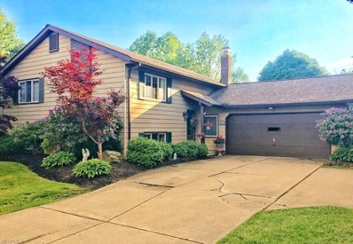 3812 Green Rd, Perry, OH 44081 - MLS#: 4034331